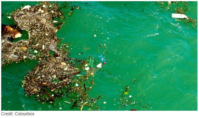 Nine Things To Know About Microplastics Instituto Ideais